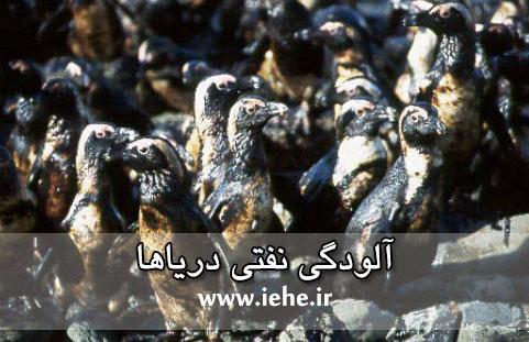 آلودگی نفتی دریاها