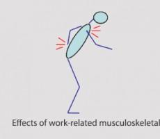 عوارض اسكلتي ناشی از کار ، ارگونومی