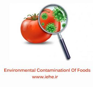 آلودگی محیطی مواد غذایی