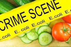 بررسی محیطی مواد غذایی در كنترل اپيدمی های مرتبط