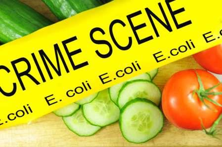 بررسی محیطی مواد غذایی در کنترل اپیدمی های مرتبط