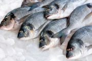 پاورپوینت آماده بهداشت ماهی و روش های تشخیص ماهی سالم