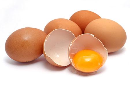 پاورپوینت آماده بهداشت تخم مرغ و هر آنچه باید بدانید فساد تخم مرغ سالمونلا در تخم مرغ مسمومیت با تخم مرغ