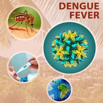 تب دانگ ناشی از لاستیک فرسوده بیماری مالاریا