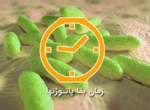 بیماری های باکتریایی انسان عوامل بیماریزا در آب عوامل بیماریزا در خاک زمان زنده ماندن عوامل بیمایزا در خاک تست ارشد کلیات بهداشت محیط